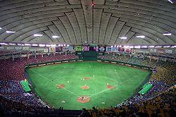 250px-Tokyo_Dome_2007-2[1].jpg